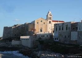 Cathedrale santa maria assunta a vieste 1