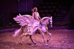 Spectacle e questre chantilly